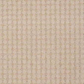 Live - Hope From Shaw Carpet