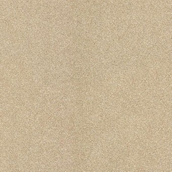 Calm - Touch From Shaw Carpet