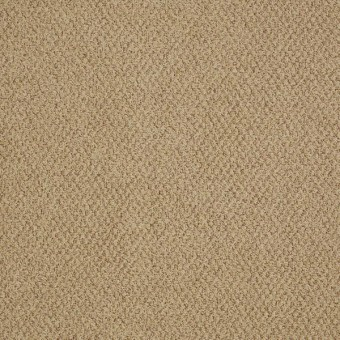 Gather EPBL - Near From Shaw Carpet