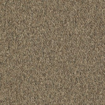Franchise II 26 EP - Bedrock From Shaw Carpet