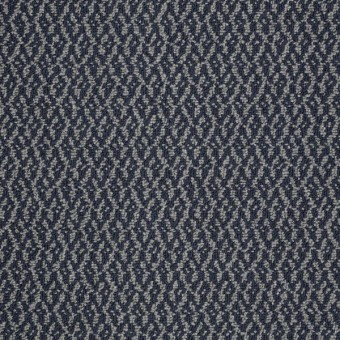 Bird's Eye - Blue Knight From Shaw Carpet