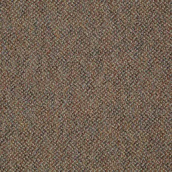 Zing - Blissful From Shaw Carpet