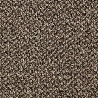 New Basics - Hot Order From Shaw Carpet
