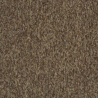 New Trade - Exuberance From Shaw Carpet