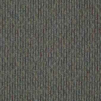 Hidden Gem - Special From Shaw Carpet
