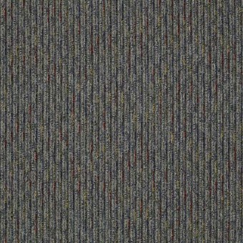 Hidden Gem - Unique From Shaw Carpet