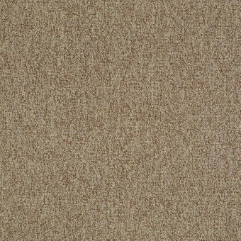 Multiplicity 18 x 36 - Plethora From Shaw Carpet