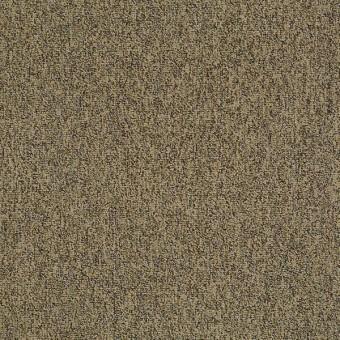 Multiplicity 24X24 Tile - Abundance From Shaw Carpet