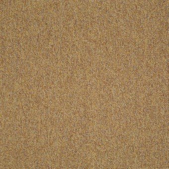 Multiplicity 18 x 36 - Expansive From Shaw Carpet