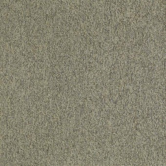 Multiplicity 18 x 36 - Batch From Shaw Carpet