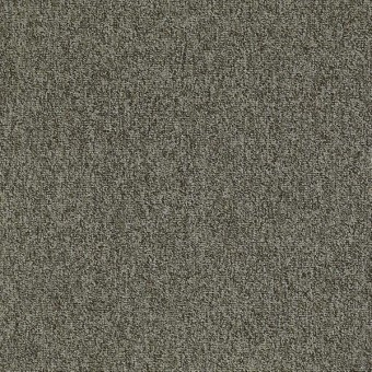 Multiplicity 18 x 36 - Cluster From Shaw Carpet