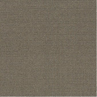 Dateline Today - News From Shaw Carpet