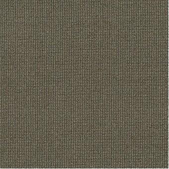 Dateline Today - Recaps From Shaw Carpet