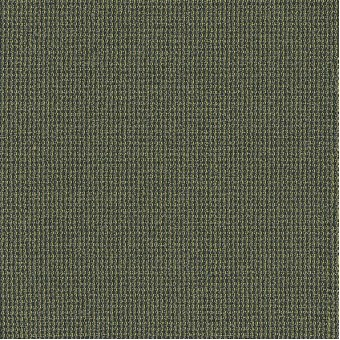 Dateline Today - Program From Shaw Carpet