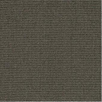 Dateline Today - Primetime From Shaw Carpet