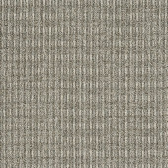 Fair Shake - Conformity From Shaw Carpet