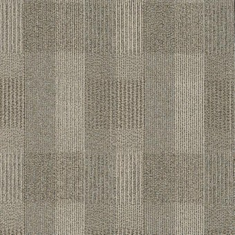 Square Deal - Conformity From Shaw Carpet