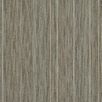 Praise Tile - Brilliant From Shaw Carpet