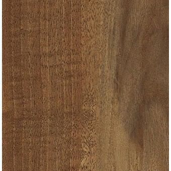 Transcend - Rookwood From Shaw Tile