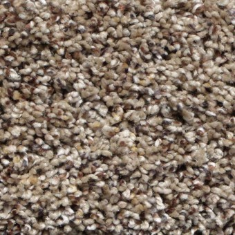 Bourbon Street II - Barley From Showcase Collection
