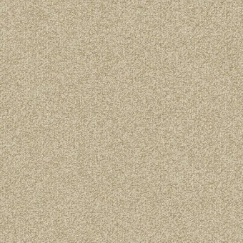 Gradient Carpet Save 30 50 Tile From Shaw Contract