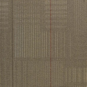 shaw contract diffuse carpet tile annual - Shaw Carpet Tile