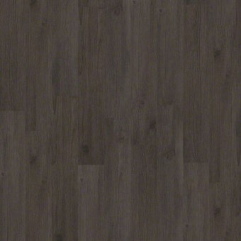 Thoroughly Modern Elite - Freeway From Shaw Tile