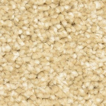 Dixie Home Carpet Review Carpet Vidalondon