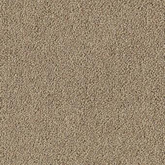 Defender 20 Mohawk Carpet Save 30 50 At Carpet Express