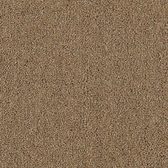 Defender 26 Mohawk Carpet Save 30 50 At Carpet Express
