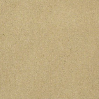 Town Hall 36 - Corn Silk From Showcase Collection