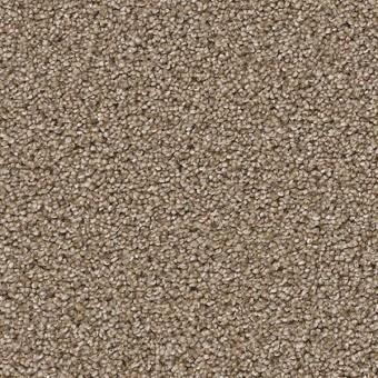 Gala Dreamweaver Carpet Save 30 50 At Carpet Express