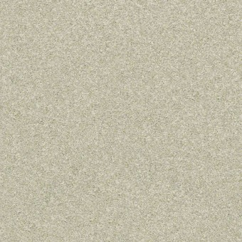 Stay Toned Tile - Vanilla Chai From Shaw Carpet