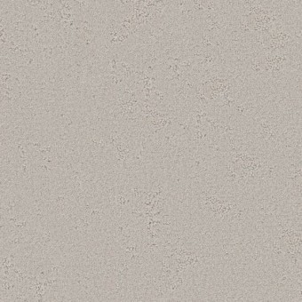 Tambre - Cozy Taupe From Shaw Carpet