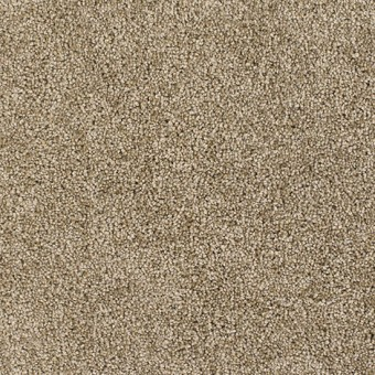 Luxuriant From Dream Weaver Carpet
