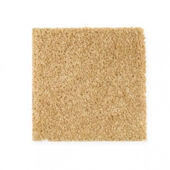 Weston Hill - Honey Mustard From Mohawk Carpet