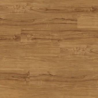 Montana - Honeywood From Marquis