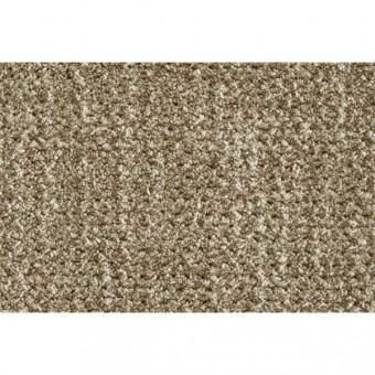 Auburn - Taupe From Stanton Carpet