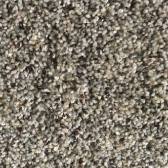 Delicate 50oz Soft Carpet - 513 From Carpet Express Deals