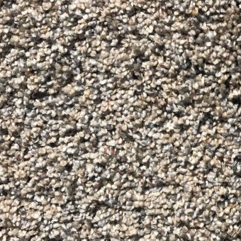 Super Super Delicate 60oz Soft Carpet - 195 From Carpet Express Deals