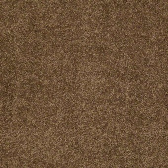 Cashmere Classic Iv Shaw Carpet Amp Queen Save 30 50 At