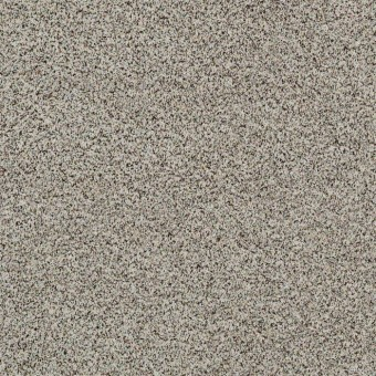 Angora Classic I - Dala From Shaw Carpet