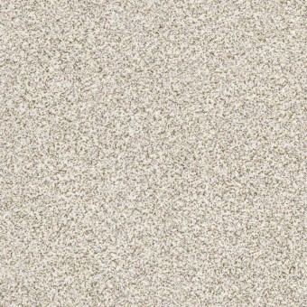 Devon Classic I - Breton From Shaw Carpet