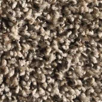 Rave - Apartment Grade Carpet - Ablaze From Showcase Collection