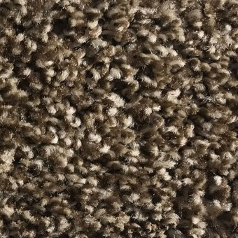 Rave - Apartment Grade Carpet - Chocolate Chip (Tweed) From Showcase Collection