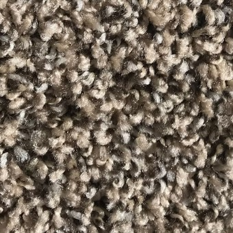 Rave - Apartment Grade Carpet - Fawn From Showcase Collection