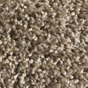 Rave - Apartment Grade Carpet - Harvest From Showcase Collection