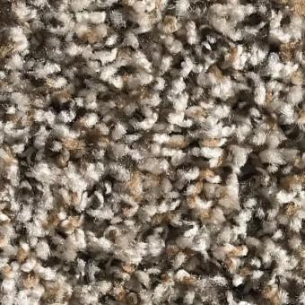 Rave - Apartment Grade Carpet - Parchment From Showcase Collection