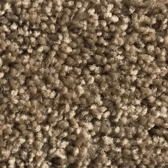 Rave - Apartment Grade Carpet - Toast From Showcase Collection