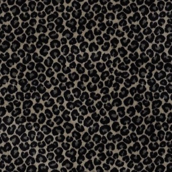 Cheetah - Go Getter From Shaw Carpet